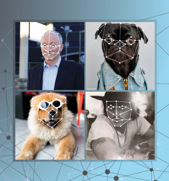 Artifical Intelligence AI Image Recognition